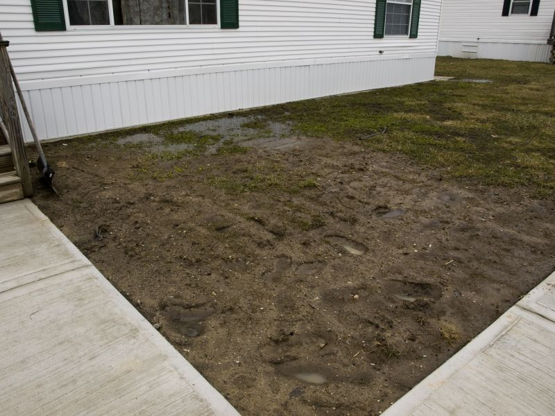 How to fix a muddy yard with dogs - muddy dog yard ...